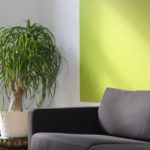 3 tips hoe een grijze hoekbank bij jouw in huis past